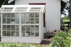 Love this greenhouse made of old windows!
