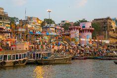 LUCIOLA l Krishna