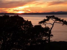 Sunset on the west side of San Juan Island photo by Joanne