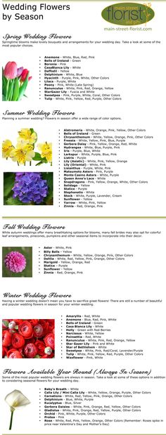 Wedding Flowers by Season - Main Street Florist - Carlinville, IL