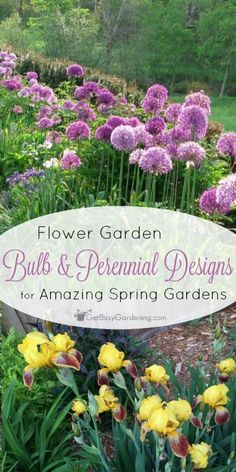 You can add bulbs to an existing perennial bed for amazing spring color, and alliums might be the perfect flower garden bulb. These designs will help! (AD)
