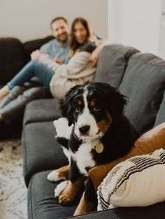Small wedding and adventure elopement photographer. First Home Pictures, Puppy Pictures, Indoor Maternity Photography, Couple Photography, Photos With Dog, Family Photos, Home Photo Shoots, Dog Poses, Photography And Videography