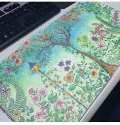 Floresta encantada/ jardim secreto Jardim e casa de pássaros