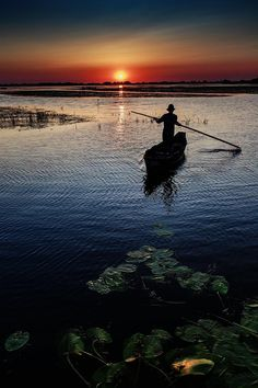 How to get to the Danube Delta? Check out all the possible roads leading to the Danube Delta here and a summer tour on the boat. Tour Around The World, Around The Worlds, Danube Delta, Romania Travel, Best Sunset, Amazing Sunsets, Travel Tours, Best Cities, Wonders Of The World
