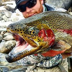Wicked colored up bow from ! Nice one dude – amberjack Trout Fishing Tips, Pike Fishing, Best Fishing, Kayak Fishing, Fishing Boats, Fishing Tricks, Catfish Fishing, Fishing Stuff, Fishing For Beginners