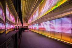 The Pixels Crossing: Interactive Installation by Miguel Chevalier