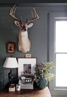 Deer Head Decor, Deer Mount Decor, Taxidermy Decor, Funny Taxidermy, Taxidermy Fox, Taxidermy Display, Bungalow, Home Office Decor, Home Decor