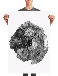 Scandinavian Style, Minimal Black, and White Photograph Print. FREE UK SHIPPING  This is a photograph of a nearly 200-year-old English Oak tree that was cut down in the heart of Devon, England. Small Palm Trees, Small Palms, Tree Branch Art, Tree Art, Tree Of Life Artwork, Black And White Wall Art, White Wood, Tree Rings, Trendy Tree
