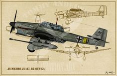 German Bombers - Tommy Anderson Publishing and Photography Ww2 Aircraft, Fighter Aircraft, Military Aircraft, Luftwaffe, Air Fighter, Fighter Jets, American Legion Post, Ww2 Planes, Aviation Art