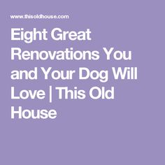 Eight Great Renovations You and Your Dog Will Love   This Old House