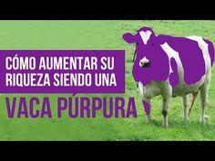 Los caballeros del dinero: Vídeo semanal - Cómo aumentar tu riqueza siendo una vaca púrpura