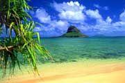 http://www.traveladvisortips.com/hawaii-island-cruises-which-cruise-line-to-choose/ - Hawaii Island Cruises – Which Cruise Line To Choose?