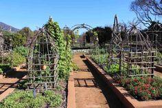 The garden of Babylonstoren