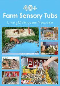 Montessori Monday – 40+ Farm Sensory Tubs