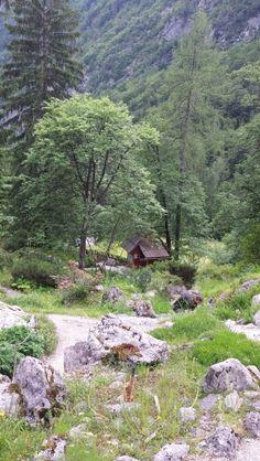 Botanic garden in Trenta