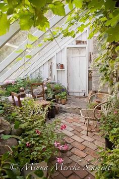Idyllic Place greenhouse with brick flooring and climbing plants. serra con pavimento in mattoni a vista e piante rampicanti. - Greenhouse - Ideas of Greenhouse Greenhouse Shed, Greenhouse Gardening, Greenhouse Film, Indoor Greenhouse, Cheap Greenhouse, Greenhouse Wedding, Greenhouse Gases, Indoor Garden, Outdoor Gardens