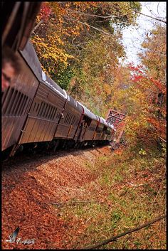 The Great Smoky Mountains Train ~ North Carolina. Definitely want to take this train ride! Nc Mountains, North Carolina Mountains, North Carolina Homes, Great Smoky Mountains, Carolina Usa, By Train, Train Tracks, Train Rides, Trains