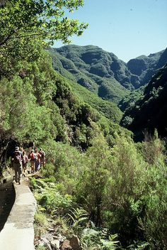 Levada walk by Madeira Islands Tourism, via Flickr, Madeira, Portugal