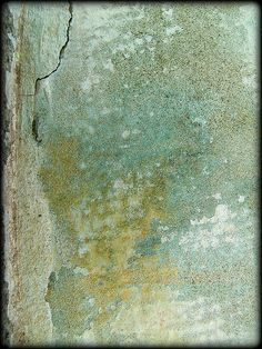 textura El Retiro Sep.09 Mon. Alfonso XII by Pepe Alfonso, via Flickr
