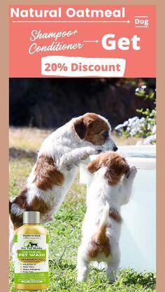 Homemade Dog Shampoo, Diy Shampoo, Natural Dog Shampoo, Usa Pro, Vitamin E, Healthy Hair, It Works, Conditioner, Pets