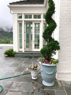 Outdoor Planters Edit... - Rach Parcell Outdoor Spaces, Outdoor Living, Backyard Fences, Outdoor Planters, Garden Seeds, Back Gardens, The Fresh, Vegetable Garden, Garden Design
