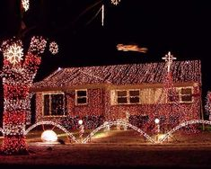 "Gary Slater's decorating tradition began in 1996 and continues to grow each year. The Livonia, Michigan, display—fondly known by neighborhood kids as ""the house with a bazillion lights""—includes 32 mini trees, over 40,000 lights, and is synced to holiday music. For more information, visit bazillionlights.com"