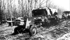 Батарея 76-мм дивизионных пушек образца 1939 года (Ф-22 УСВ), буксируемые грузовиками Интернэшнл Харвестер KR8 (International Harvester) американского производства, совершает марш для смены позиции.