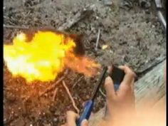 Quokka cruelty French tourists fined after pleading guilty to burning an...