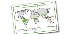 From South America to Asia, teach about tropical environments with our Rainforest resources for students, complete with activities and teaching packs. Teaching Packs, Geography Activities, Rainforests, Tropical Forest, Biomes, Abstract Drawings, Classroom Organization, School Projects