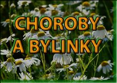 Vyberte si neduh a hledejte bylinky Healing Herbs, Medicinal Herbs, Look Body, Dieta Detox, Herbal Tea, Natural Medicine, Natural Cures, Herbal Remedies, Health And Beauty