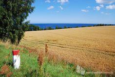 Feld an der Ostküste der Insel Bornholm #Bornholm #Insel #Dänemark