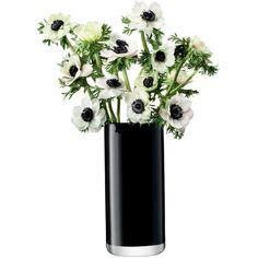 LSA International Flower Colour Black Cylinder Bouquet Vase - 28cm ($44) ❤ liked on Polyvore featuring home, home decor, floral decor, flowers, plants, fillers, decor, black, black home decor and floral home decor