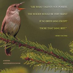 """""""Use what talents you possess. The woods would be very silent if no birds sang except those that sang best."""" - Henry Van Dyke"""