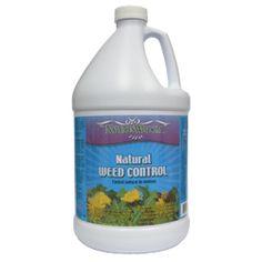 www.seasonedhomem...  REALLY Killing Weeds With Vinegar