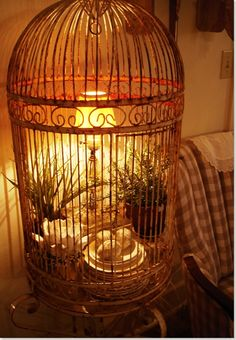 Birdcage filled with lamp, plants and vintage china - love!