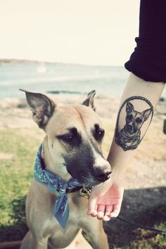 "i don't want a portrait, but since my blonde lab died, i want a tattoo saying ""My beloved friend Blondie"" in arabic or sanskrit. but i still love the portrait of this dog!"