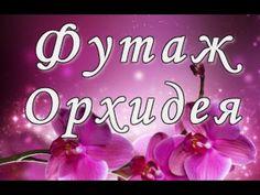 Футаж Орхидея