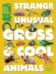 Open the cover of Strange, Unusual, Gross & Cool Animals by Charles Ghigna to meet the ickiest, stickiest, blobbiest, oddest animals. Animal Planet Books. (sponsored)