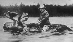 "Two months before the 1912 U.S. presidential election, the New York Tribune ran a set of humorous pictures under the headline ""The Race For The White House,"" showing the three main presidential candidates astride the animals associated with their parties. This is the one of Theodore Roosevelt on a moose. Two photos cut, pasted together and photographed. He never actually rode a moose."