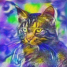 Artificial neural style iris flower cat