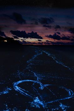 Sea of Stars on Vaadhoo Island in the Maldives