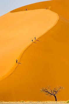 Highest sand dunes in the world - Sossusvlei Sand Dunes, Namib Desert, Namib-Naukluft National Park, Namibia[ MyGourmetCafe.com ]