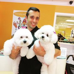 Barron & Chloe with their show groomer David! Just finished their grooming!