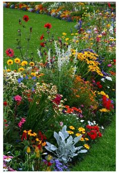 Amazing Gardens, Beautiful Gardens, Unique Garden, Garden Modern, Easy Garden, Garden Art, Garden Drawing, Diy Jardin, Shed Landscaping