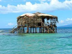 """Petite cabane construite au milieu de l'eau avec des feuilles de palmier. """"Pelican Bar (Jamaïque) """""""