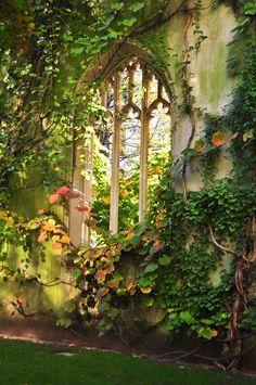 Gardening Ideas and Inspiration for Katharine Dever transformation expert, supporting women entrepreneurs to live their dreams. Beautiful World, Beautiful Gardens, Beautiful Places, The Secret Garden, Secret Gardens, Parcs, Dream Garden, Garden Of Eden, Garden Gates