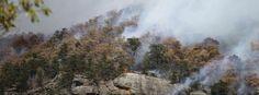 Severe wildfires spreading across the Southeast US