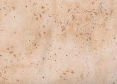 Tan Fabric, Monster Truck Mania by Quilting Treasures, Sand and Dirt Texture, Cream Blender Fabric, 1/2 yard fabric, 05070