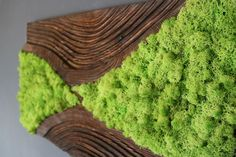 Moss Wall Art, Wall Art Decor, Wood Interior Design, Wood Design, Moss Paint, Island Moos, Vertical Garden Plants, Wood Art, Wall Wood
