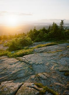 Blue Hill Overlook, Acadia National Park